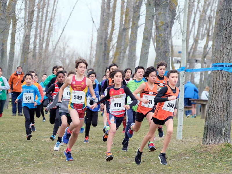 Cross de las Uvas 2018
